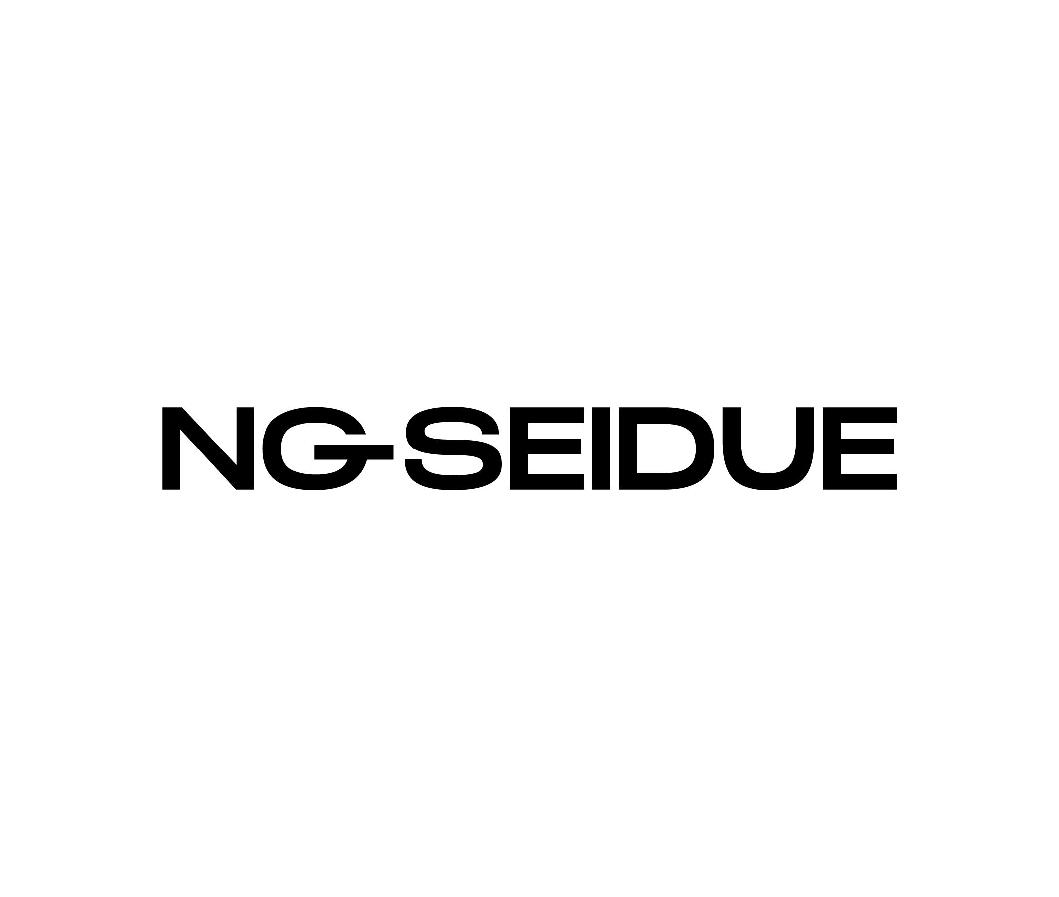 DC-Website-Logos---NGSEIDUE